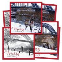 Newcastle Quayside Christmas Cards
